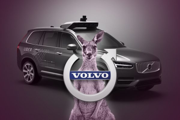 Australia's Self-Driving Volvo Car Technology Foiled By Kangaroos